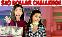 $10-Dollar-Tree-Challenge