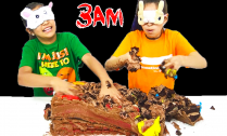 do-not-do-smash-a-cake-at-3am