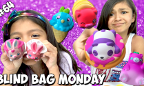 squish-delight-squishies-blind-bag-monday
