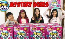 pikmi-pops-mystery-boxes